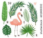 vector set of palm leaves and... | Shutterstock .eps vector #601800332