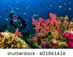 Young Woman Scuba Diving On A...
