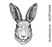hand drawn portrait of rabbit.... | Shutterstock .eps vector #601876466