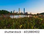 Pond At Bicentennial Park In...