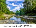 forest river landscape | Shutterstock . vector #601970516