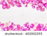 flower petals. | Shutterstock . vector #602002355
