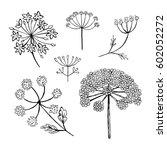 set of vector different types... | Shutterstock .eps vector #602052272