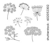 set of vector different types... | Shutterstock .eps vector #602052302