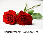 Two Red Roses On Stem With...
