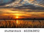 sunset grass on river sunset... | Shutterstock . vector #602063852