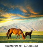 horses   Shutterstock . vector #60208333