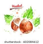 watercolor illustration of... | Shutterstock . vector #602084612