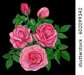 bouquet of pink roses... | Shutterstock . vector #602099342