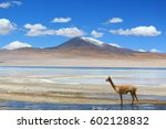 reserve | Shutterstock . vector #602128832