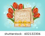 jewish holiday passover banner... | Shutterstock .eps vector #602132306