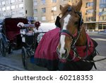 Horse With Carriage Waiting For ...