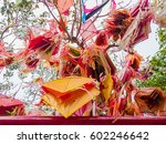 colorful kites hanging on the... | Shutterstock . vector #602246642