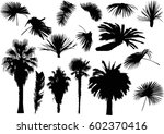 illustration with palm trees...   Shutterstock .eps vector #602370416