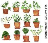 set of doodle home plants... | Shutterstock . vector #602395145