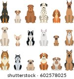 vector illustration  set of... | Shutterstock .eps vector #602578025