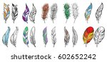 colorful detailed bird feathers ... | Shutterstock .eps vector #602652242