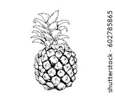 pineapple drawn in black and... | Shutterstock . vector #602785865