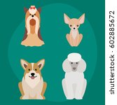 funny cartoon dog character... | Shutterstock .eps vector #602885672