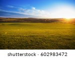 field of spring grass on... | Shutterstock . vector #602983472