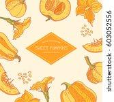 sweet pumpkins vector
