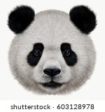 Portrait Of A Panda Bear Wild...