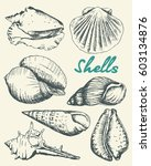 set of various beautiful...   Shutterstock .eps vector #603134876