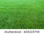 green lawn background   Shutterstock . vector #603223745