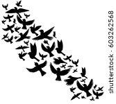 bird flock  vector flying birds ... | Shutterstock .eps vector #603262568