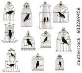 vector set of hand drawn birds... | Shutterstock .eps vector #603269456