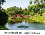 the bridge | Shutterstock . vector #603435122