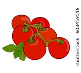 tomatoes. fresh ripe red whole... | Shutterstock .eps vector #603459518