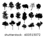 collection of black tree... | Shutterstock . vector #603515072