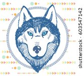 hand drawn portrait of a husky... | Shutterstock .eps vector #603547142