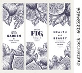 fig banner template set. fruit... | Shutterstock .eps vector #603584606