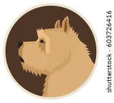 dog collection norwich terrier