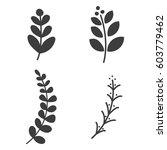 leaves for laurel wreath set... | Shutterstock .eps vector #603779462