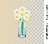 chamomile and glass of water.... | Shutterstock .eps vector #603784856
