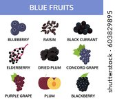 blue fruits collection info... | Shutterstock .eps vector #603829895