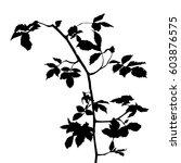 black vector silhouette of a... | Shutterstock .eps vector #603876575