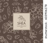 background with shea nut.... | Shutterstock .eps vector #603906278