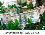 Dollars Growing On The Monetar...