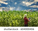 farmer with tablet at field at...   Shutterstock . vector #604000406