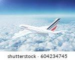 paris  france   circa 2017  in... | Shutterstock . vector #604234745