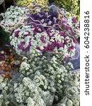 beautiful fresh flowers in... | Shutterstock . vector #604238816