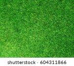 beautiful green grass texture | Shutterstock . vector #604311866