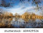 small lake with sunny orange... | Shutterstock . vector #604429526