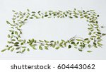 green leaves and white... | Shutterstock . vector #604443062