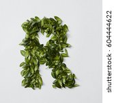 alphabet letters from leaves | Shutterstock . vector #604444622