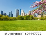 central park at spring sunny... | Shutterstock . vector #604447772